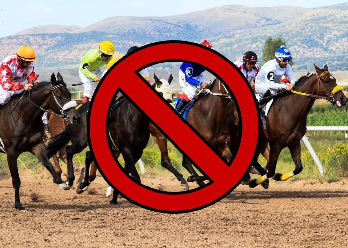 Can Bookies Legally Ban You for Winning Too Many Bets?